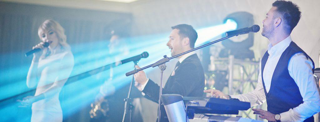 muzica live de petrecere la restaurantul cerbul romanesc la fiecare sfarsit de saptamana